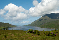 Killary Harbour Connemara © Peter Gilbert