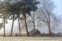 Misty morning walk at Croome © Jill Dyson Orme - 2nd
